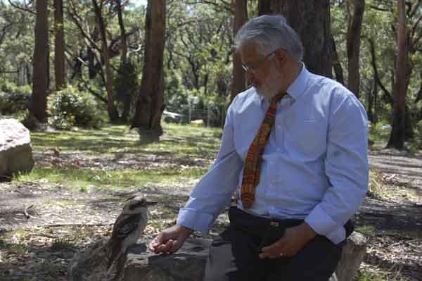 4b Kookaburra Gerry moore