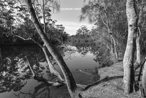 Cockrow Creek