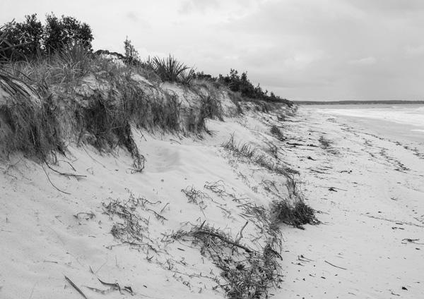 02 Colingwood Beach