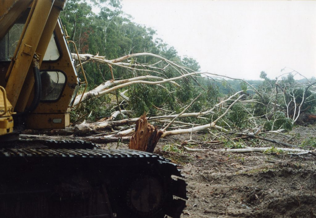 To show the destruction done by bulldozers clearing vegetation  at Seven Mile Beach, Gerroa