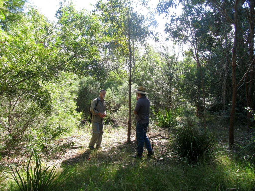 Landcare project coordinator Retty Barratt checking plantings in 200llwidthimage