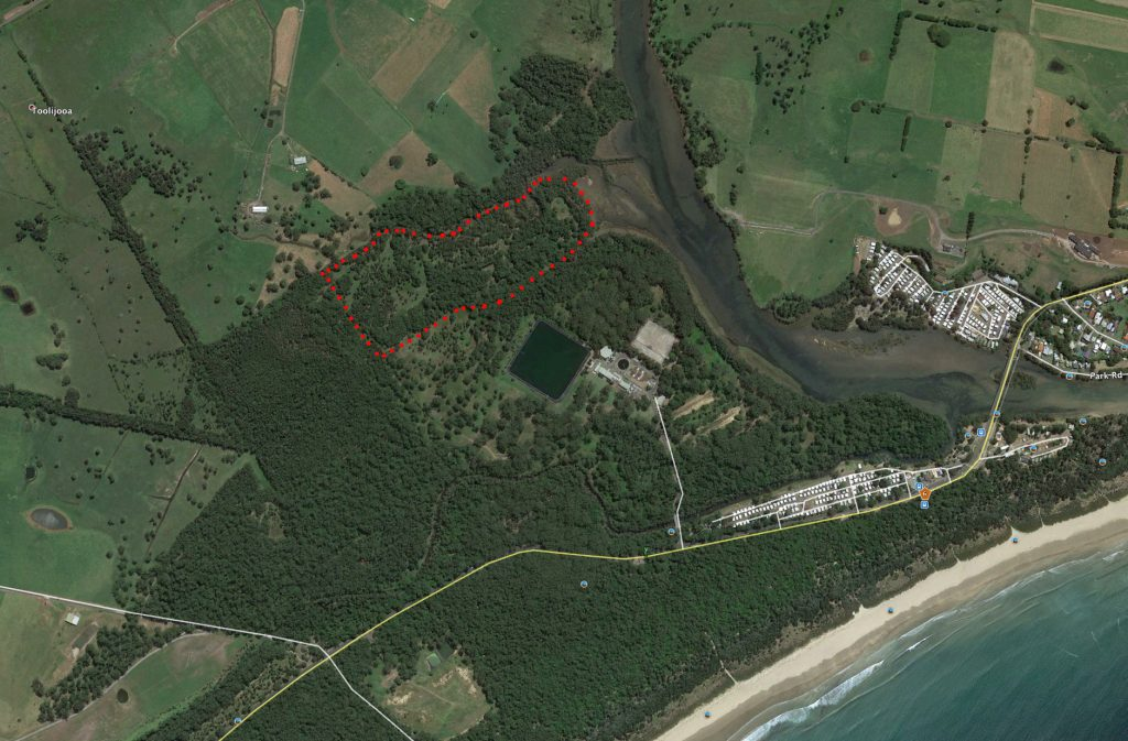 Aerial image of Baileys Island showing progress of Landcare project with lots of natural regenaration visible