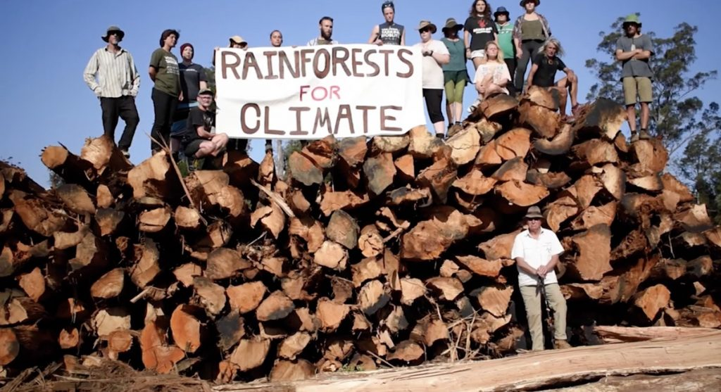 Forest Defenders in Tasmania interrupting and stopping logging of old growth forests