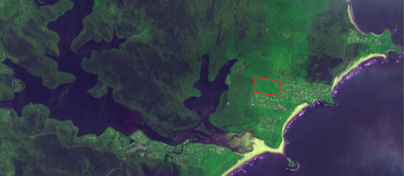satellite image of the 20 ha of unburnt bush in Manyana