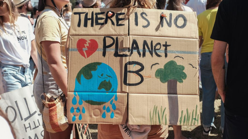 school strike 4 climate a global action to protest environmental destruction caused by climate change, we must act now, there is no planet B