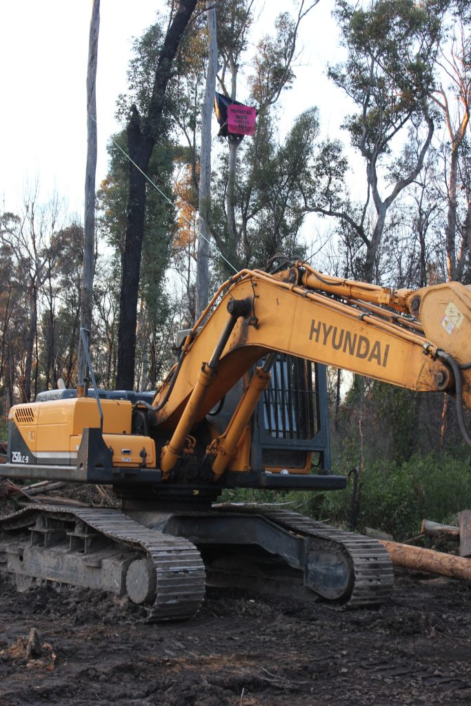protesters are hindering machinery from logging work in Mogo State forest