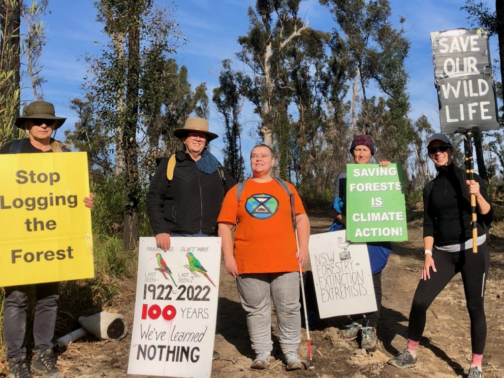 Protesters demanding an end to native forest logging to protect our environment for the future