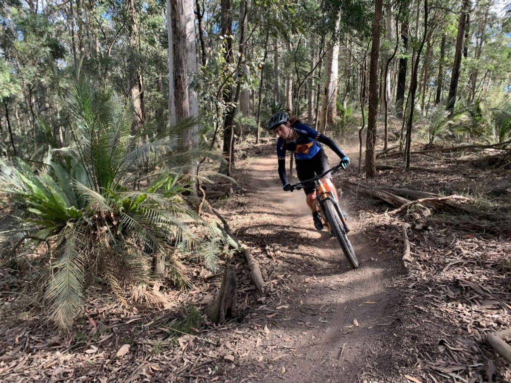 Mountain biking is a great alternative to use our state forests in a more environmentally friendly way