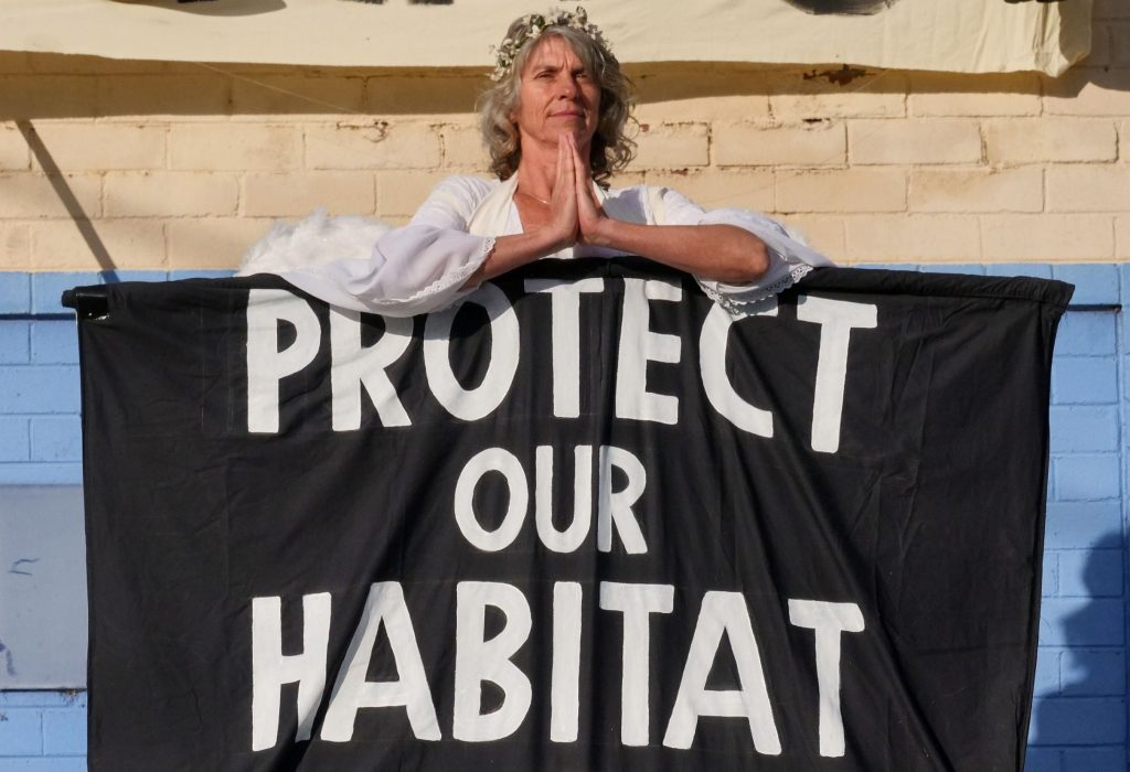 XR Angel Sue protesting in Bega to raise the alarm on the climate emergency. Photo supplied